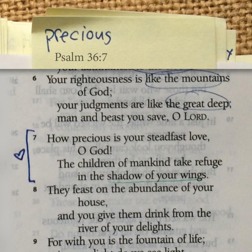 Psalm 36:7, God's steadfast love is precious